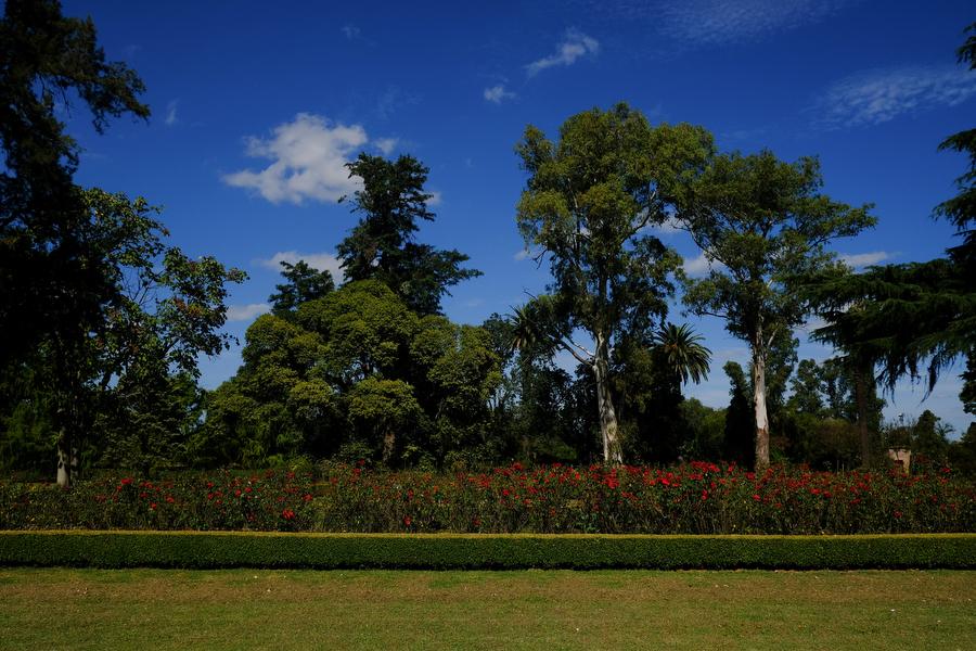 Fotografo de casamiento-Estancia-Santa-Elena-facundo santana-02